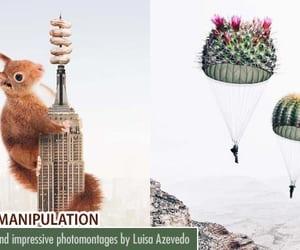 graphic design, photo manipulation, and photoshopped image