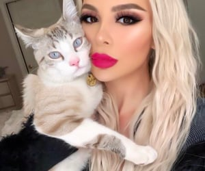 animal, blondie, and meow image
