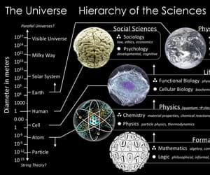 biology, science, and physics image