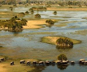 africa, article, and Botswana image