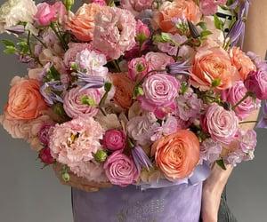 beautiful, flowers, and flowerslovers.ru image