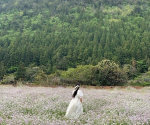 fashion, field, and flowers image