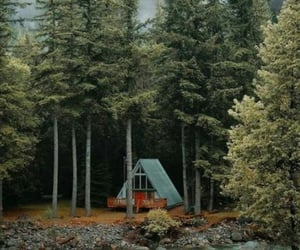 aventura, naturaleza, and silencio image