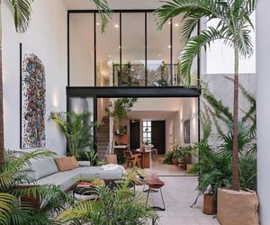 home, plants, and architecture image