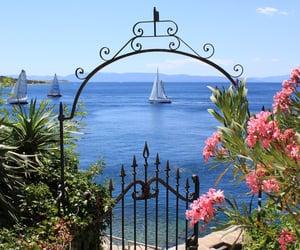 sea, flowers, and ocean image