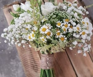 bouquet, daisy, and flowers image