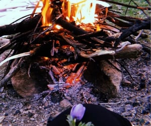 camping, coal, and flower image