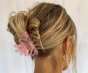 aesthetic, hair, and hair clips image