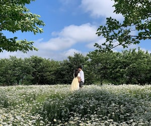 couple, field, and flowers image