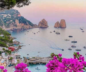 flowers, italy, and landscape image