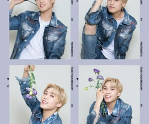 aesthetic, flower, and lavender image