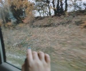 Autumn vibes🍂
