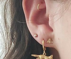 bee, Piercings, and ear piercings image