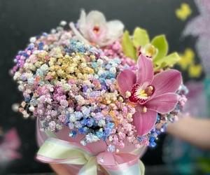 beautiful, flowers, and cvet.ok26 image