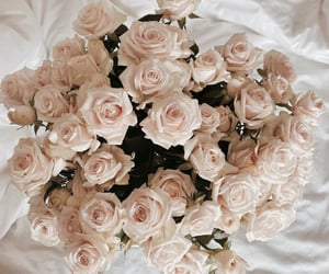 beige, bouquet, and floral image