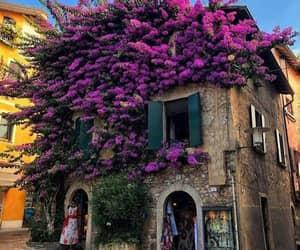 decoração, suadecoracao, and flores na fachada image