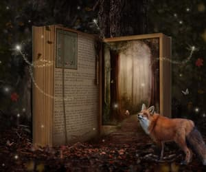 book, books, and enchanted image