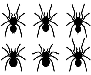 art, spider, and svg image