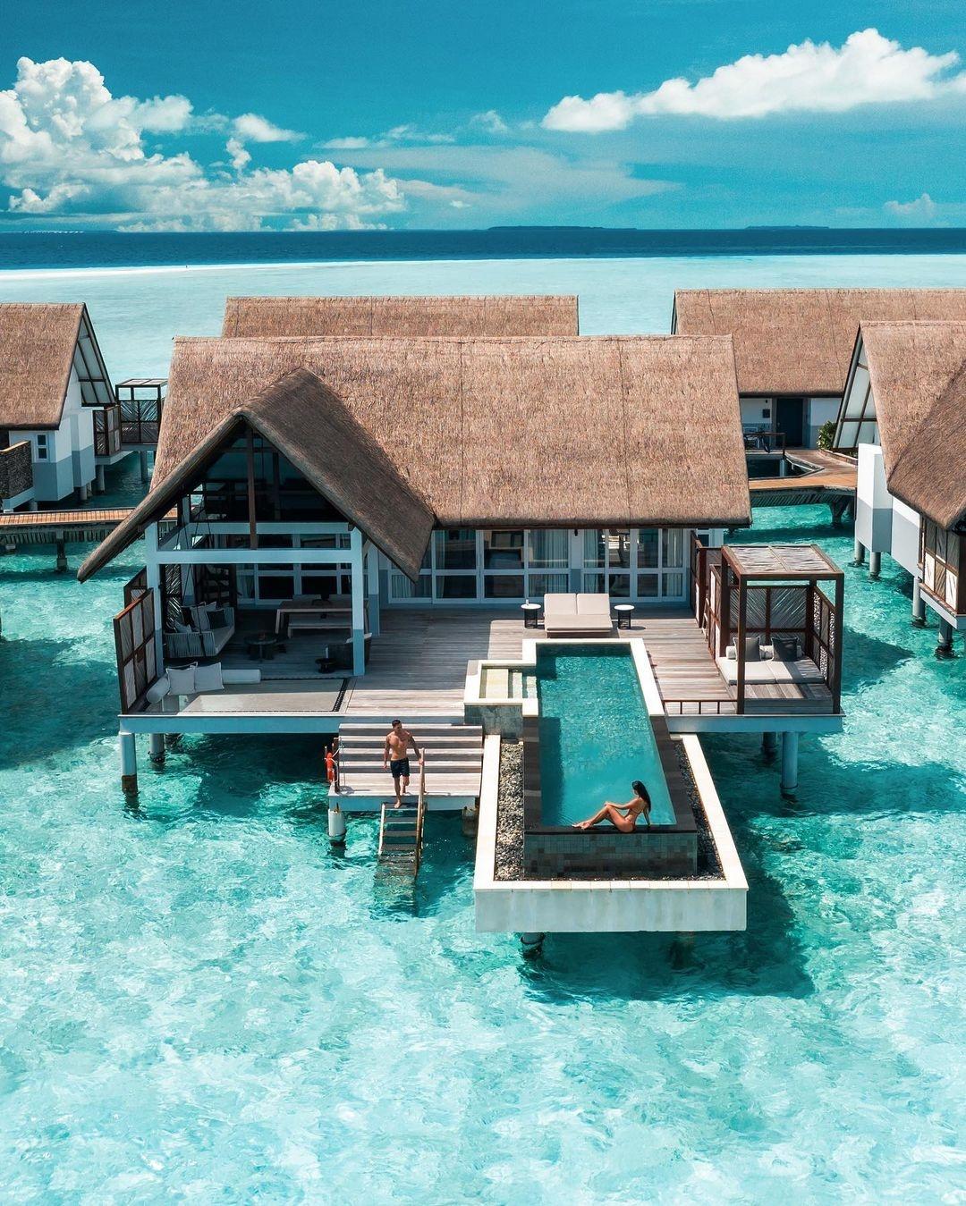 holidays, Maldives, and summer image