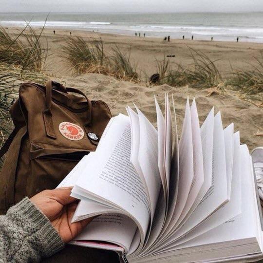 article, bookshelf, and bookworm image