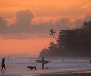 sunset, ocean, and surf image