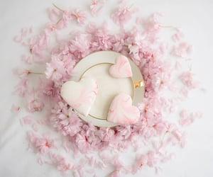 Pink Beauty   @eve365