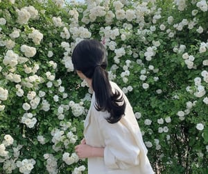 fashion, flowers, and hair image