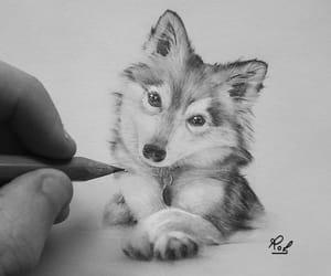 pencil drawing image