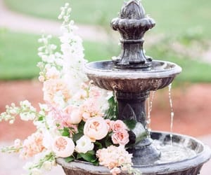garden and amazing fountain image