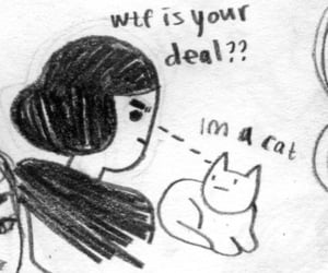 cat, drawing, and meme image