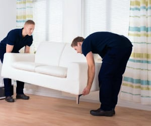 moving company and long distance movers image