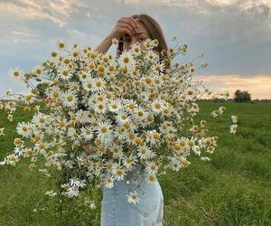 Image by Asya Nikolaeva