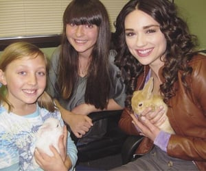 archive, teenwolf, and crystal reed image