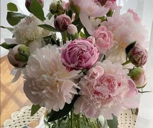 flowers and peony image