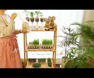 plants, video, and youtube image