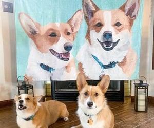 custom photo blankets image