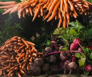 agriculture, logistics, and agrilogistics image