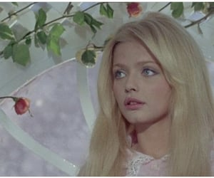 candy 1968 image