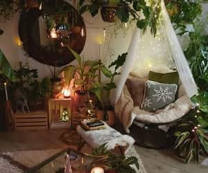 plants, home, and decor image