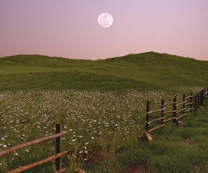 countryside and moon image
