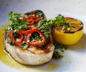 fish, grilled swordfish, and gato nyc image