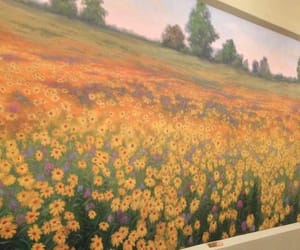 field, sunflowers, and parks and rec image