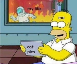 lol and meme image