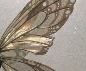 fairy, wings, and aesthetic image