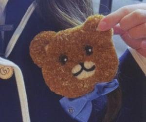 bear, closeup, and details image