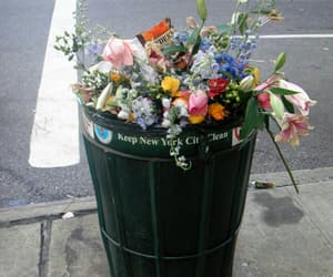 flowers, new york, and trash image