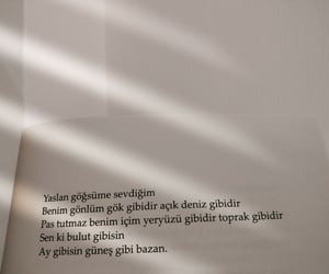 ask, türkçe sözler, and sanat image