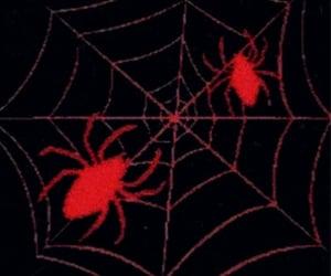gothic, spiderweb, and web image
