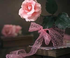 amor, flor, and inspiracion image