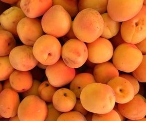 fruit, peach, and orange image